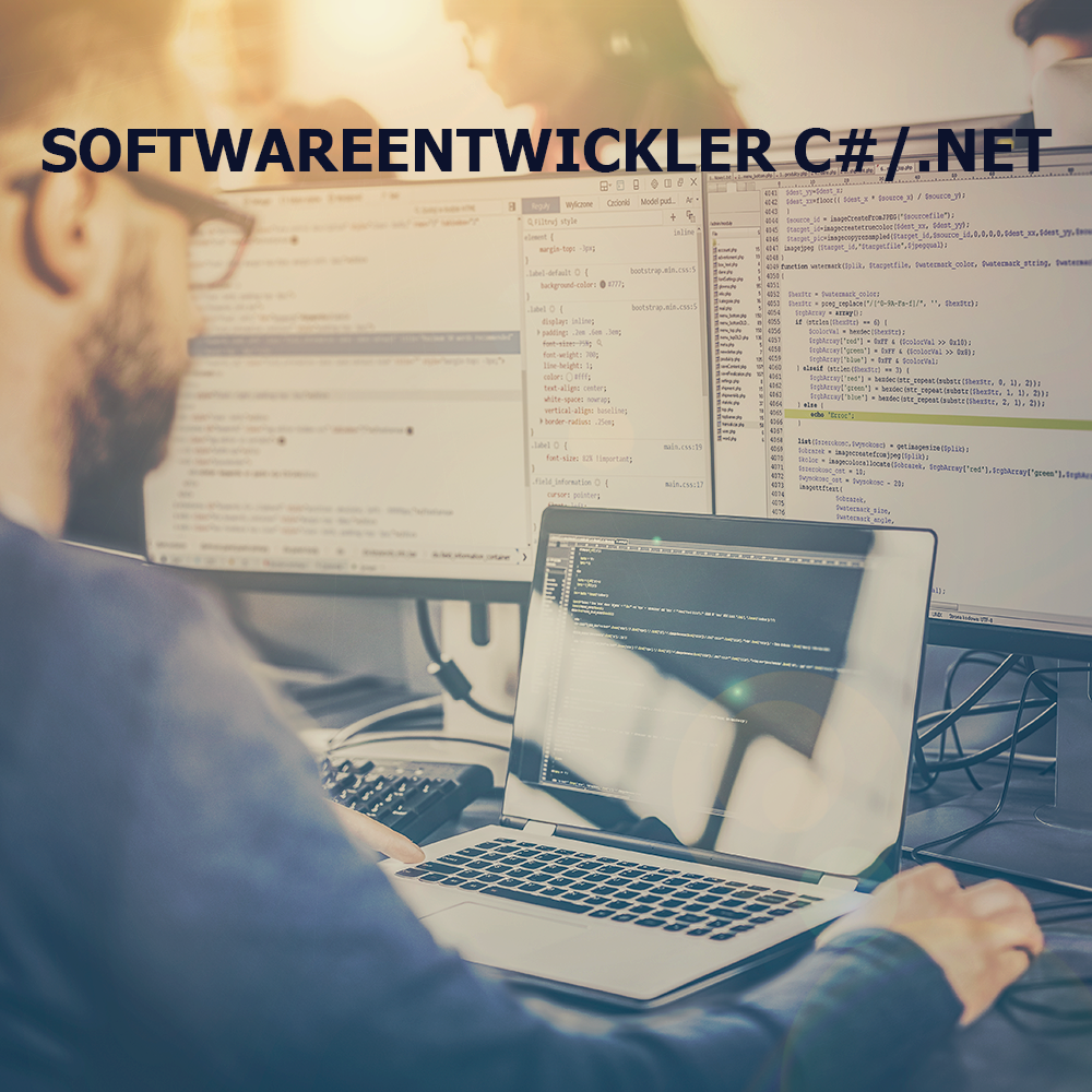 SoftwareentwicklerC#